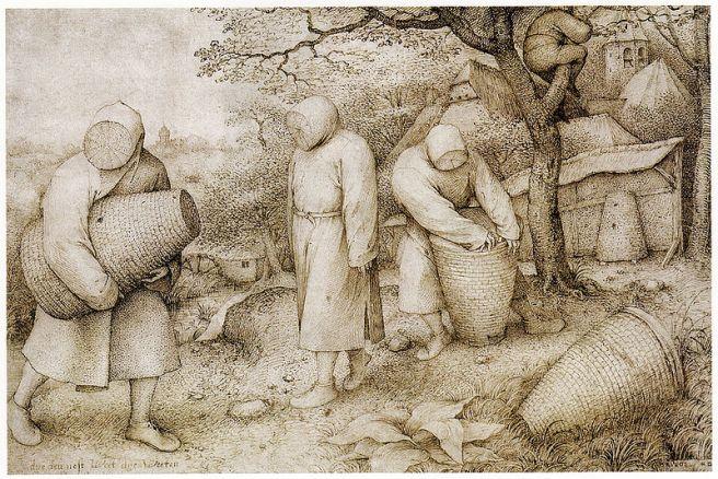 Bruegel, Imkers, Kupferstichkabinett, Berlijn