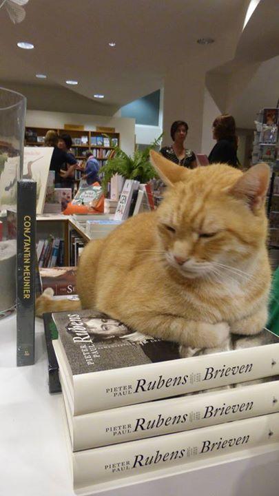 Kat met Rubens (foto P. Lateur)